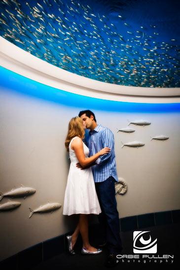 Monterey Bay Fine Art Wedding Photographer Orbie Pullen captured this shot in the Monterey Bay Aquarium in Monterey, Ca.