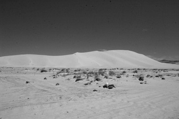 Sand_Mountain_Nevada