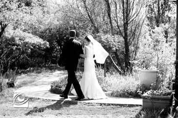 Hans Faden Winery Wedding Photographer Orbie Pullen Shot this photograph of a couple in Calistoga, Ca.