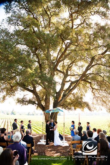 Healdsburg-Country-Gardens-Weddings-3