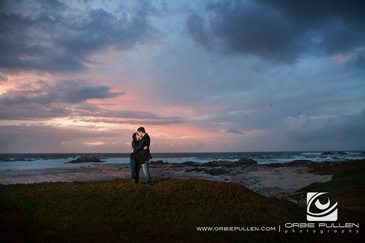 Pacific_Grove_Engagement_Portrait_Session_8