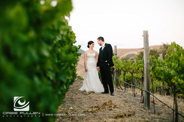Holman_Ranch_Vineyards_Carmel_Valley_Weddings_14
